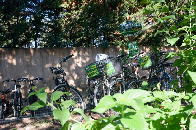 Location de vélos dans le Var